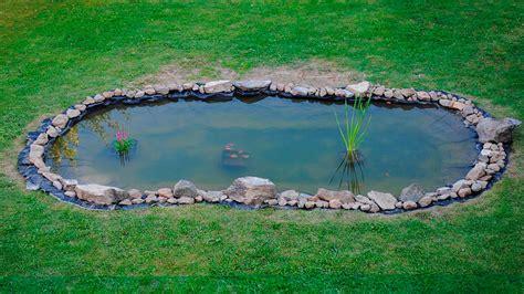 estanque jardin estanque de jardin limpieza de estanque o fuente de