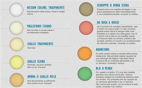 feci chiare alimentazione colore urine scopri come deve essere il colore delle tue
