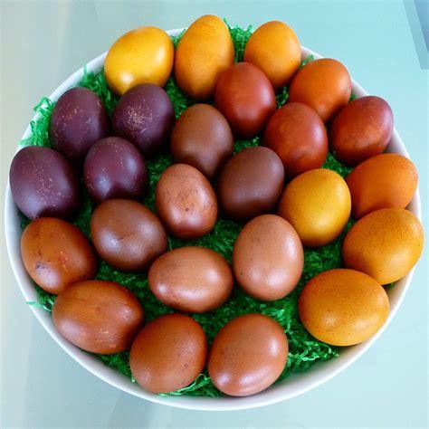 schöne len 220 berraschungs eierfarben der mundschenk cie