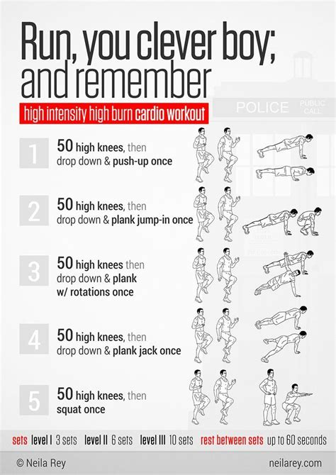 exercise routine for beginners workout programs