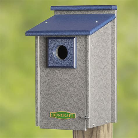 blue bird house hole size bluebird house hole size lookup beforebuying