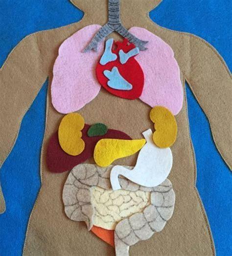 imagenes de partes del cuerpo con material reciclado las manualidades del cuerpo humano para los ni 241 os