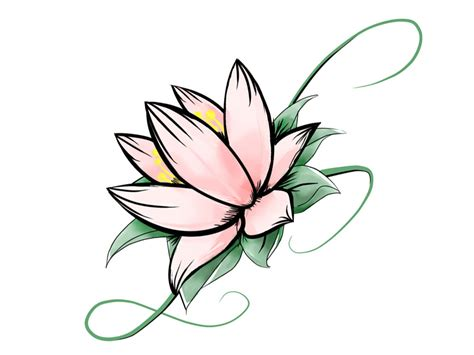 lotus flower images drawings www imgkid the image
