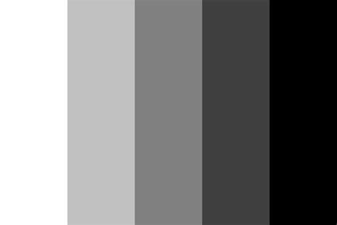 monochrome colors monochrome color palette