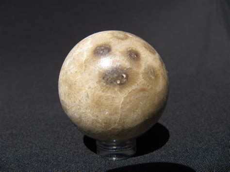 petoskey stone sphere fossil coral spf12 the sphere maker
