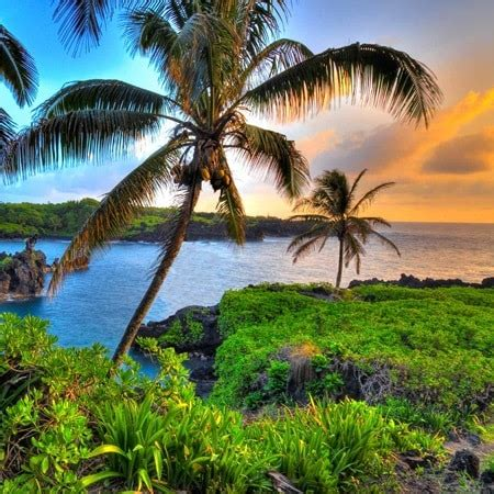 Hawaii Tours & Hawaii Holidays   Trafalgar AU