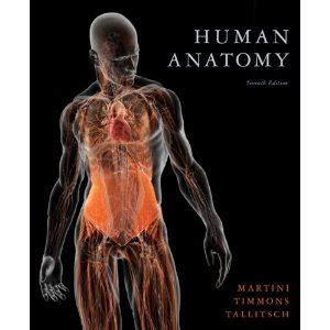 defining human books best human anatomy book skeletal muscular cardiovascular