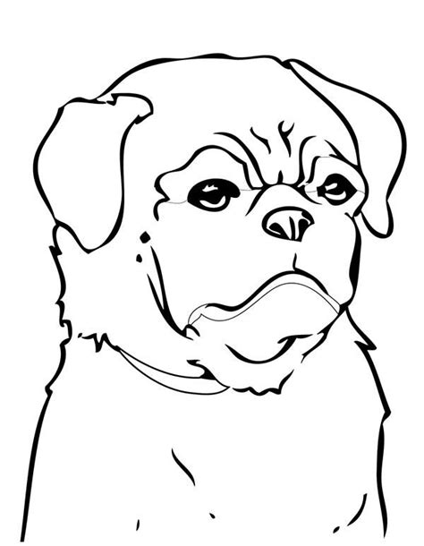 pig the pug colouring pages 33 best images about coloring on chihuahuas coloring and coloring books