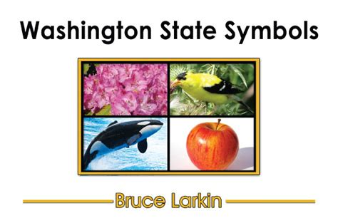 the of the state of washington a book for tourists classic reprint books washington state symbols grade book wilbooks