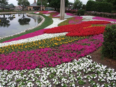 nice flower garden nice flower garden pic greatindex net disney and idolza
