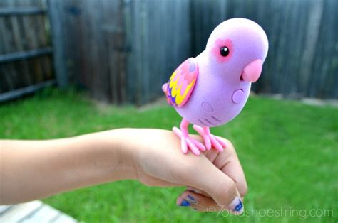 little live pets bird perfect pet for kids littlelivepets