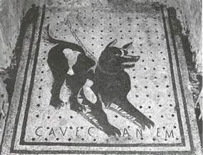 Cave Canem Doormat cave canem mosaic quot beware of quot doomat damn doormats