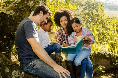 imagenes sobre la familia feliz fam 237 lia feliz lendo juntos sob uma 225 rvore baixar fotos