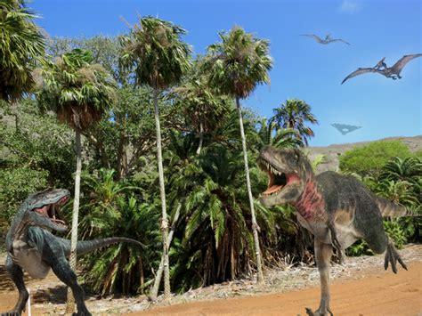 koko crater botanical gardens koko botanical garden koko crater botanical garden