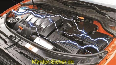 Marder Auto Vertreiben by Marder Vertreiben Auto Marderschaden So Lassen Sich