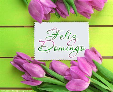 imagenes feliz domingo con rosas imagenes de flores para enviar por mensaje feliz domingo