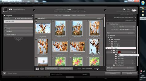 tutorial of lightroom 3 tutorial lightroom 3 come importare le foto