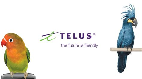 Telus Finder Canada Best Mobile Phone Company In Canada Tech Livewire