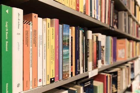 libreria mondo offeso libreria mondo offeso flawless