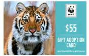 Check Giant Tiger Gift Card Balance - gift adoption cards by e mail or print at home world wildlife fund