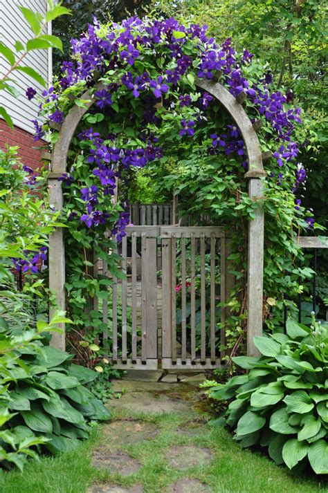 Garden Gate Trellis Flowers Growing On A Garden Arbor Windowbox