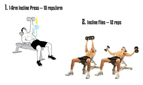 dumbbell exercises for chest fit and slim indian