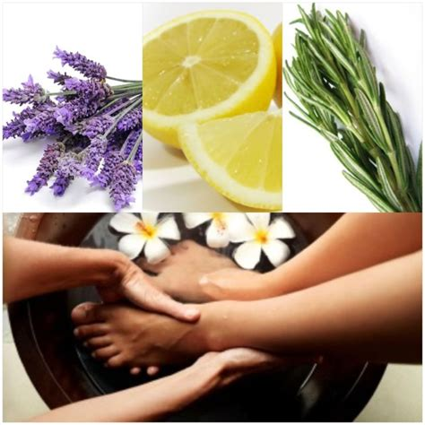 17 best images about essential oils on