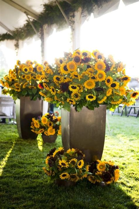 Sunflower Arrangements For Weddings by Mint Juleps Magnolias Pearls Yellow Of Wedding