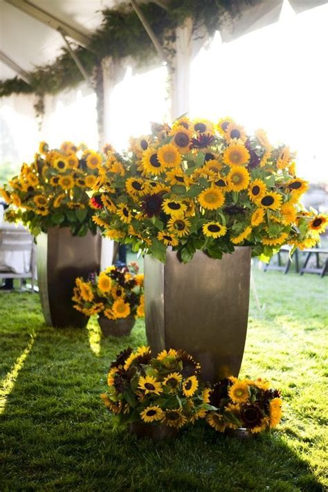 Sunflowers, Wedding flower centerpieces and Decor wedding
