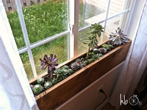 windowsill planter indoor how to make a succulent window box window plants and box