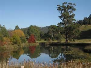 a botanic garden of trees near devonport tasmania