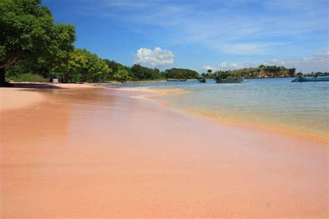 objek wisata unik  pantai pink lombok