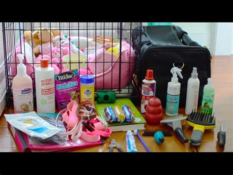 puppy haul cat supplies haul from zooplus doovi