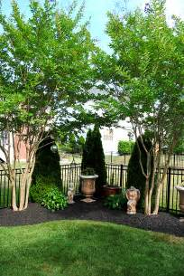 Backyard Ideas Trees 8 Great Ideas For Backyard Landscaping The Graphics