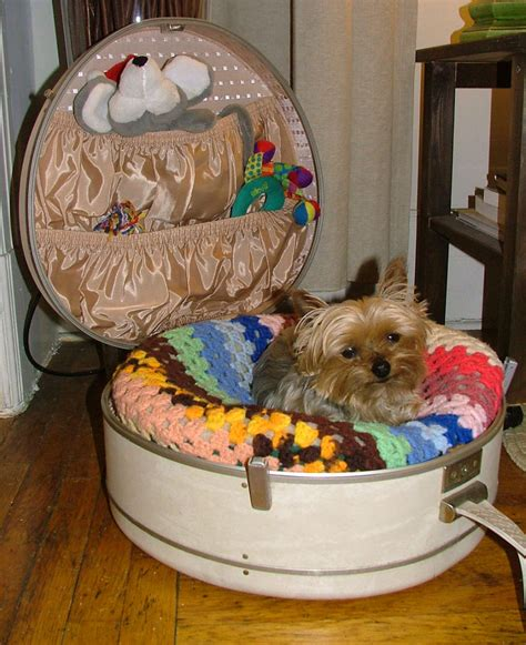cool beds for dogs cool creative ways to design dog beds dog beds beds