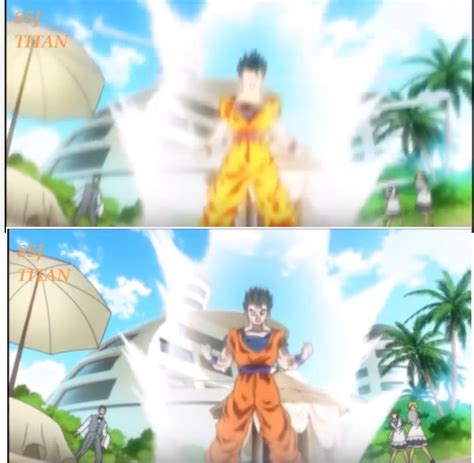 dragon ball series is there any physical difference