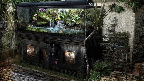 aquarium design wallpaper aquarium design wallpaper architecture wallpaper better