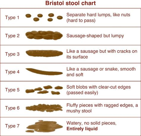 bowel movement color chart bristol stool chart drjockers