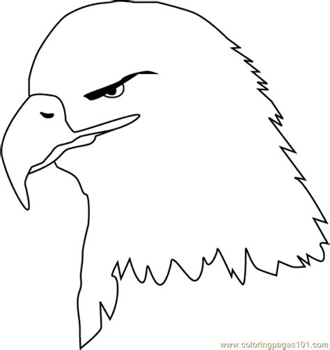 usa eagle coloring page bald eagle clr coloring page free usa coloring pages