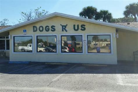 dogs r us titusville photo0 jpg picture of dogs r us titusville tripadvisor