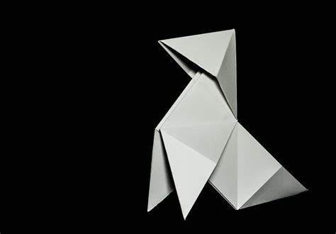 pajarita de papel pajarita de papel jgc2011 flickr