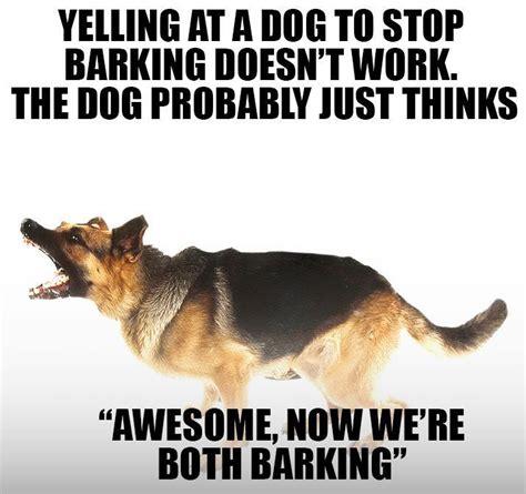 Barking Dog Meme