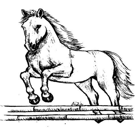 disegni cavalli facili disegni di cavalli da stare
