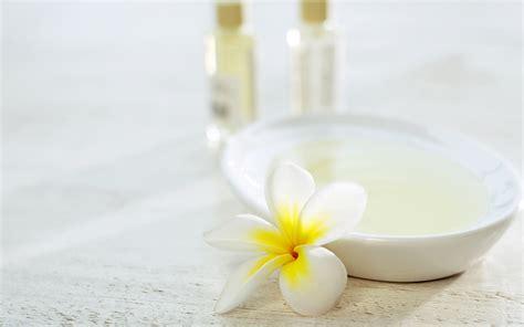 spa pics luxury spa elements hot tub accessories spa accessories