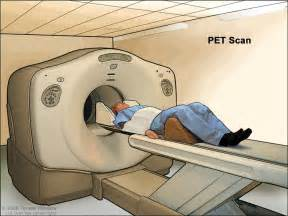 Proton Emission Tomography Definition Of Pet Scan Nci Dictionary Of Cancer Terms
