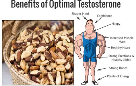nuts best brazil nuts the best way to boost your testosterone the