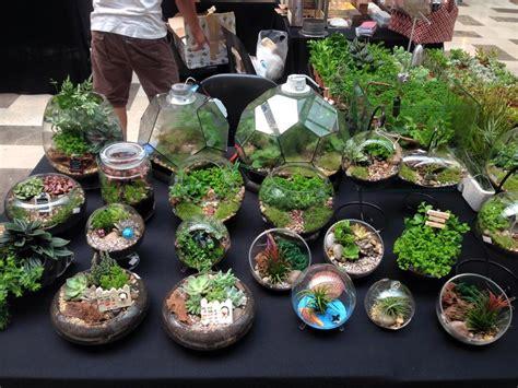 Buy Bookends terrarium 14 best places to find quot little gardens quot in