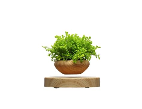 indoor plant pot levitating indoor plant pot 187 gadget flow