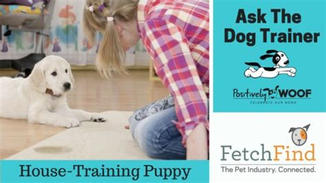how can i trained my ask the trainer how can i potty my puppy