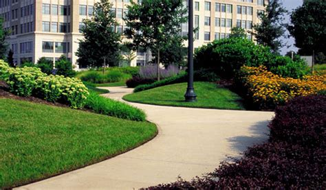 about us cf landscaping lawn care
